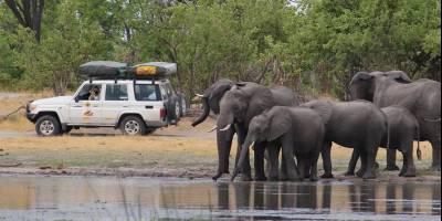По Африке на машине своей компанией